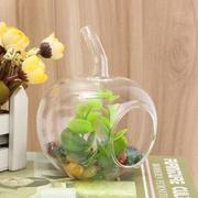 Crystal Glass Flower Terrarium Container